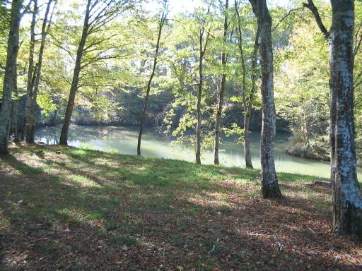 Waldweiher (natürlich) im Gers, Aufnahme Ruedi Baumann