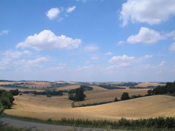 Landschaft im Gers, französische Kornkammer