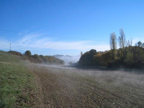 Nebelschwaden0008