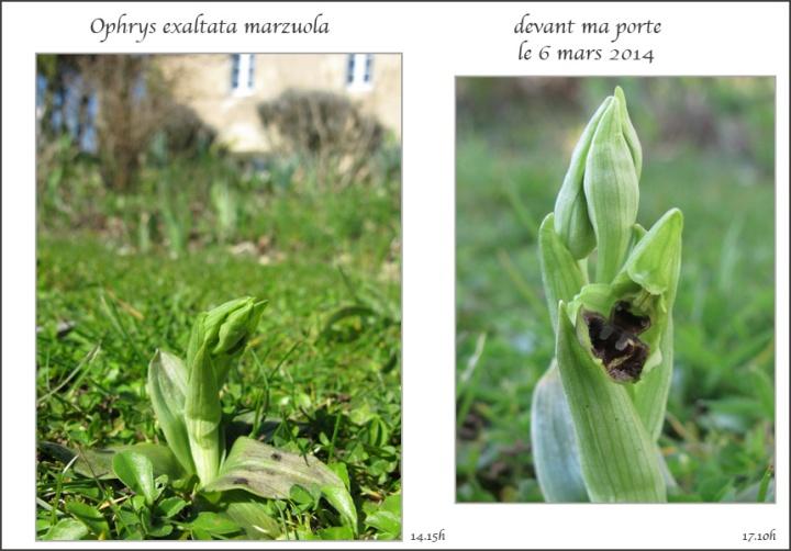 1-marzuola-devant-la-porte