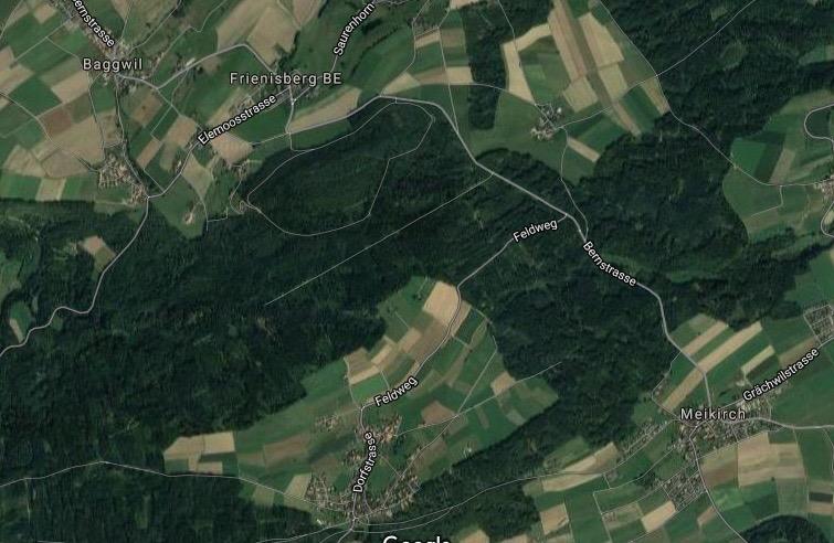 frienisberg (1).jpg